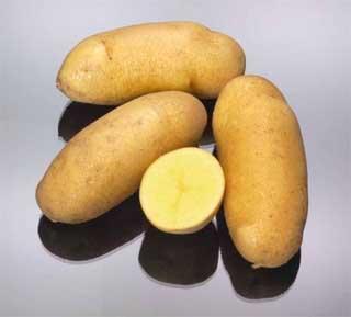 Gourmet Potatoes