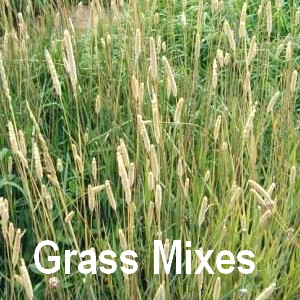 Grass and meadow mixes