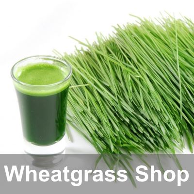 Wheatgrass Shop and Juicers
