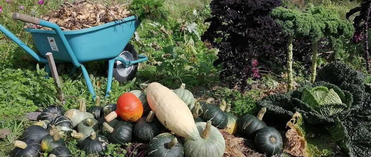 Organic farm and garden supplies