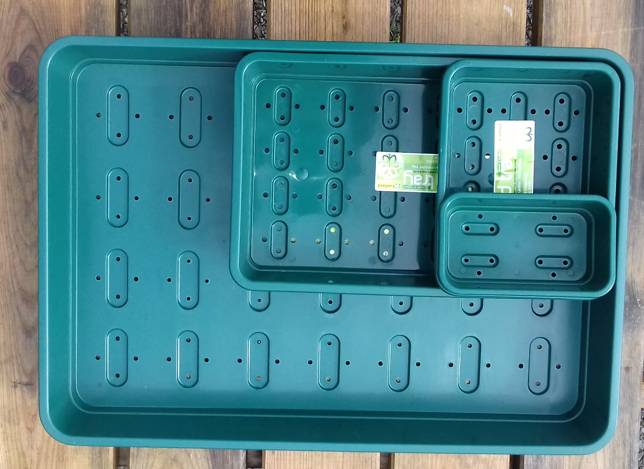 Strong seed trays made in the UK