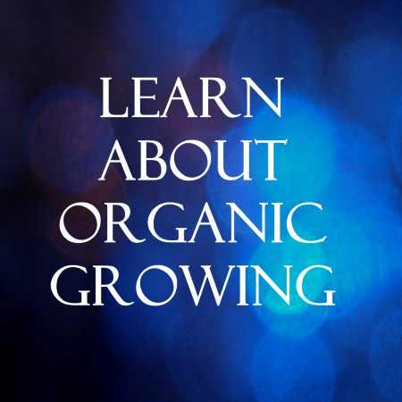 Learn about organic growing