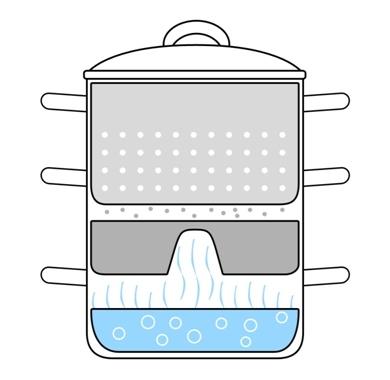 Steam Juice Extractor
