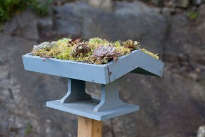 bird-table