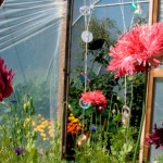 How does your garden grow - featured April garden
