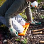Caring for your Knees when gardening
