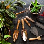 Top Ten Tools for Gardeners & Growers