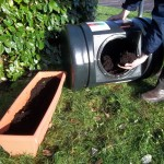 homemade compost, how do i make compost, cani compost meat
