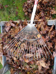 stailess steel leaf rake from Sneeboer