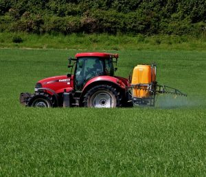 Spraying Cereals