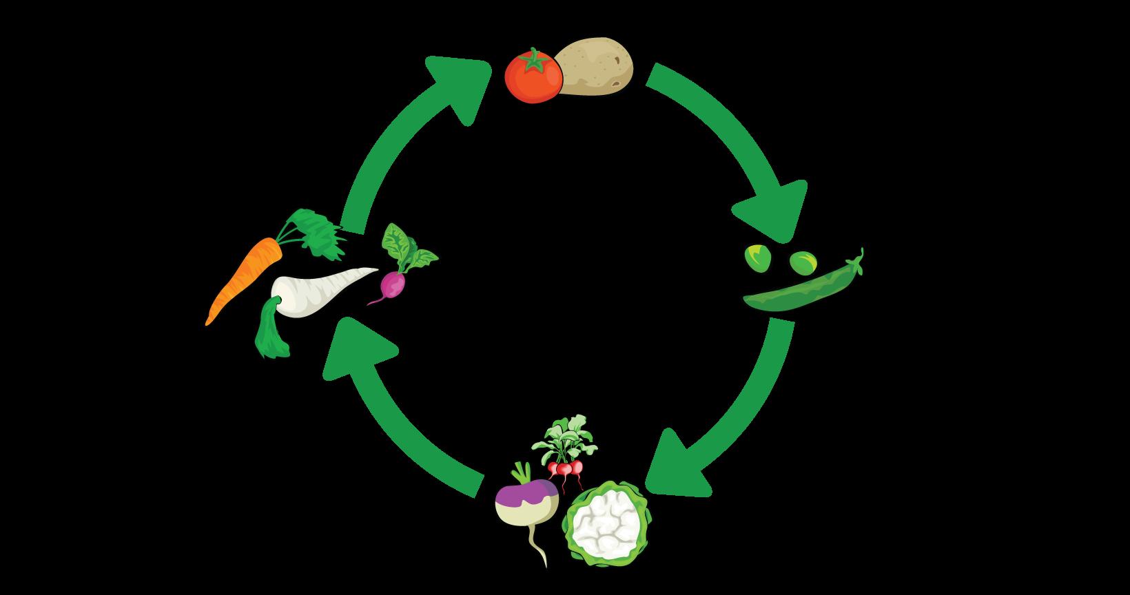 crop-rotation-