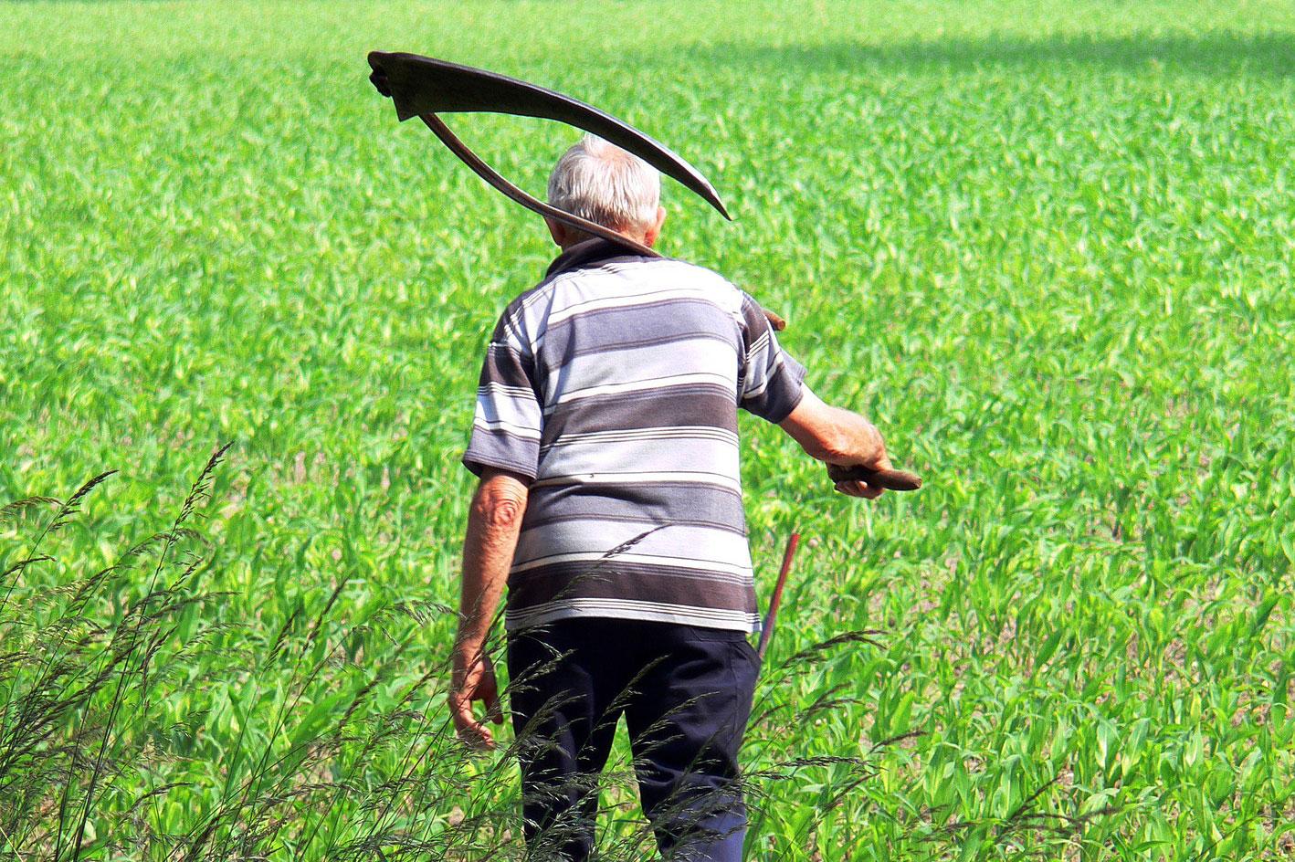 farmer-1543490_1920