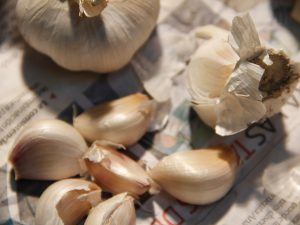 Garlic cloves, organic
